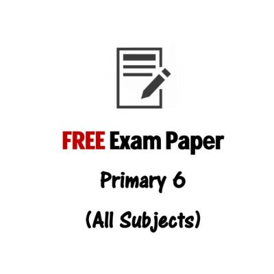 free_p1_to_p6_primary_school_tamil_exam_paper_1494683591_2dd1a981
