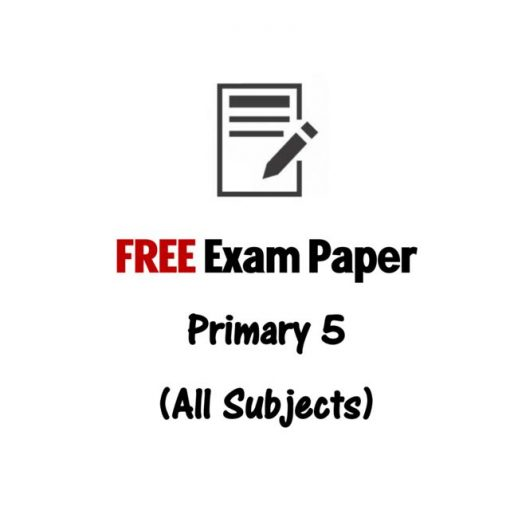 free_p1_to_p6_primary_school_tamil_exam_paper_1494683592_81360ff4
